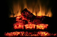 free  electric fireplace quotes